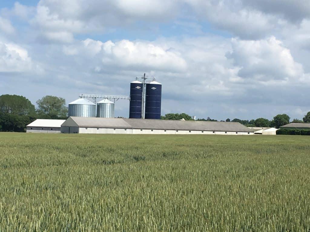 Asserva automatisme en élevage et énergies renouvelables