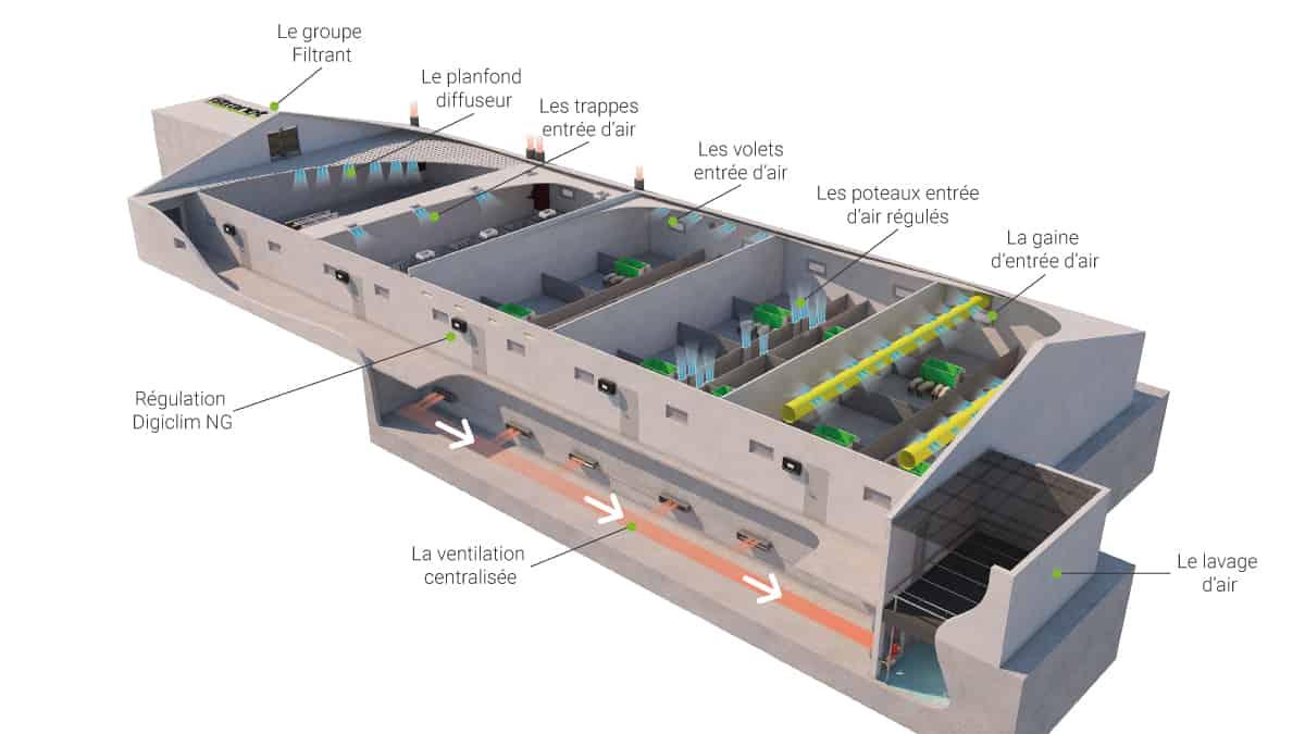 plan - ventilation - bâtiment - elevage - Asserva